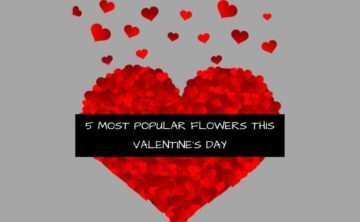 5 most popular flowers this valentine's day